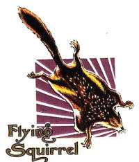 Scott logo