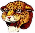 panther-head-logo.jpg