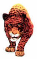 panther-logo-frontal-100.jpg